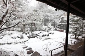 凛とした冬の庭園