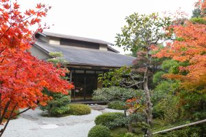紅葉に包まれる秋の庭園